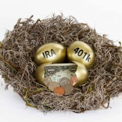 Nest with cash and golden eggs with IRA and 401(k).